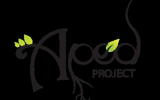 Apod Project #33